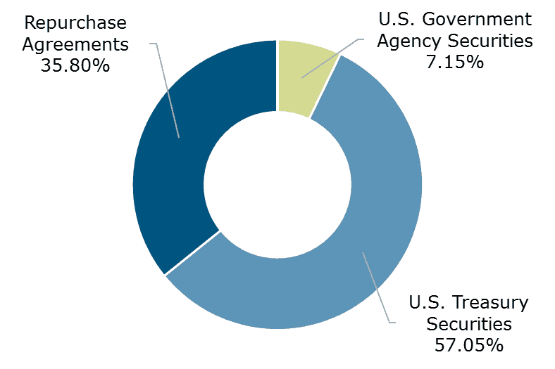 12.17 - Texas CLASS Government Portfolio Breakdown