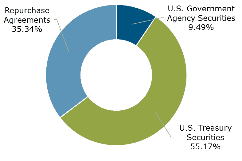 Texas CLASS Government Portfolio Breakdown Month Ending